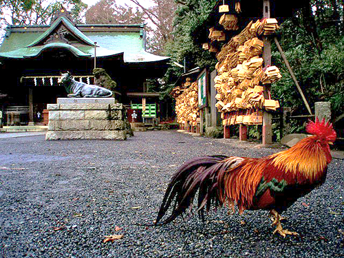 fowl_shrine