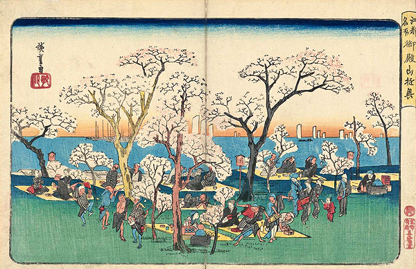 Hanami in Edo period.